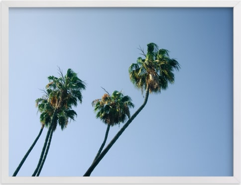 This is a green art by Kitty Seeber called Palm Lean.