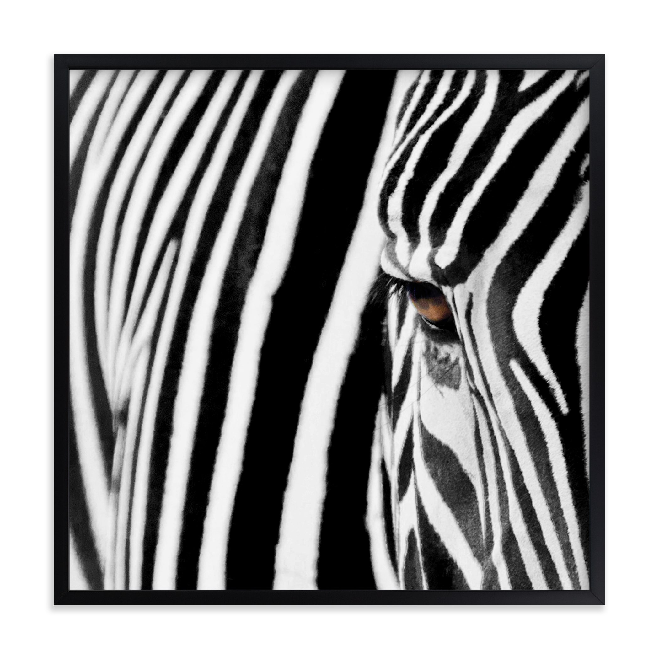 """""""Stripes"""" - Limited Edition Art Print by Melissa Wagner in beautiful frame options and a variety of sizes."""