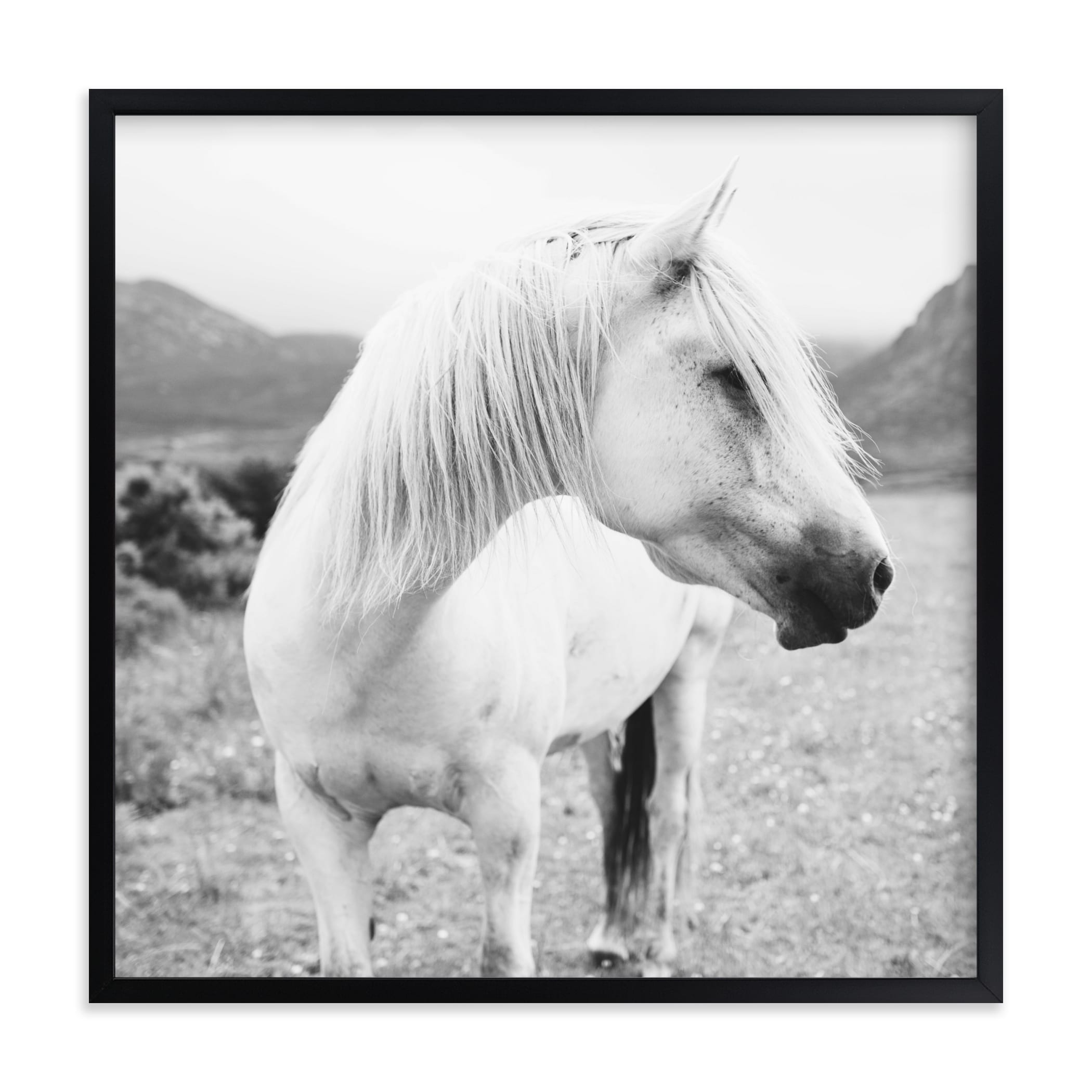 """""""Field Horse"""" - Grownup Open Edition Non-custom Art Print by Natalie Uprichard in beautiful frame options and a variety of sizes."""