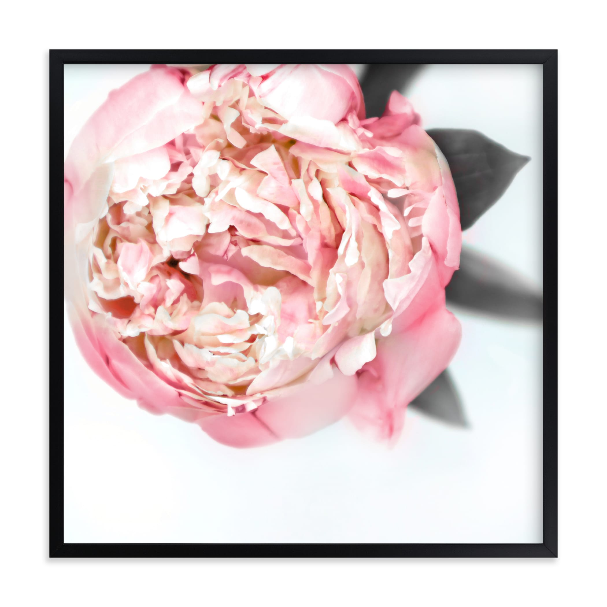 """Tatiana peony"" by Rosana Laiz Blursbyai in beautiful frame options and a variety of sizes."