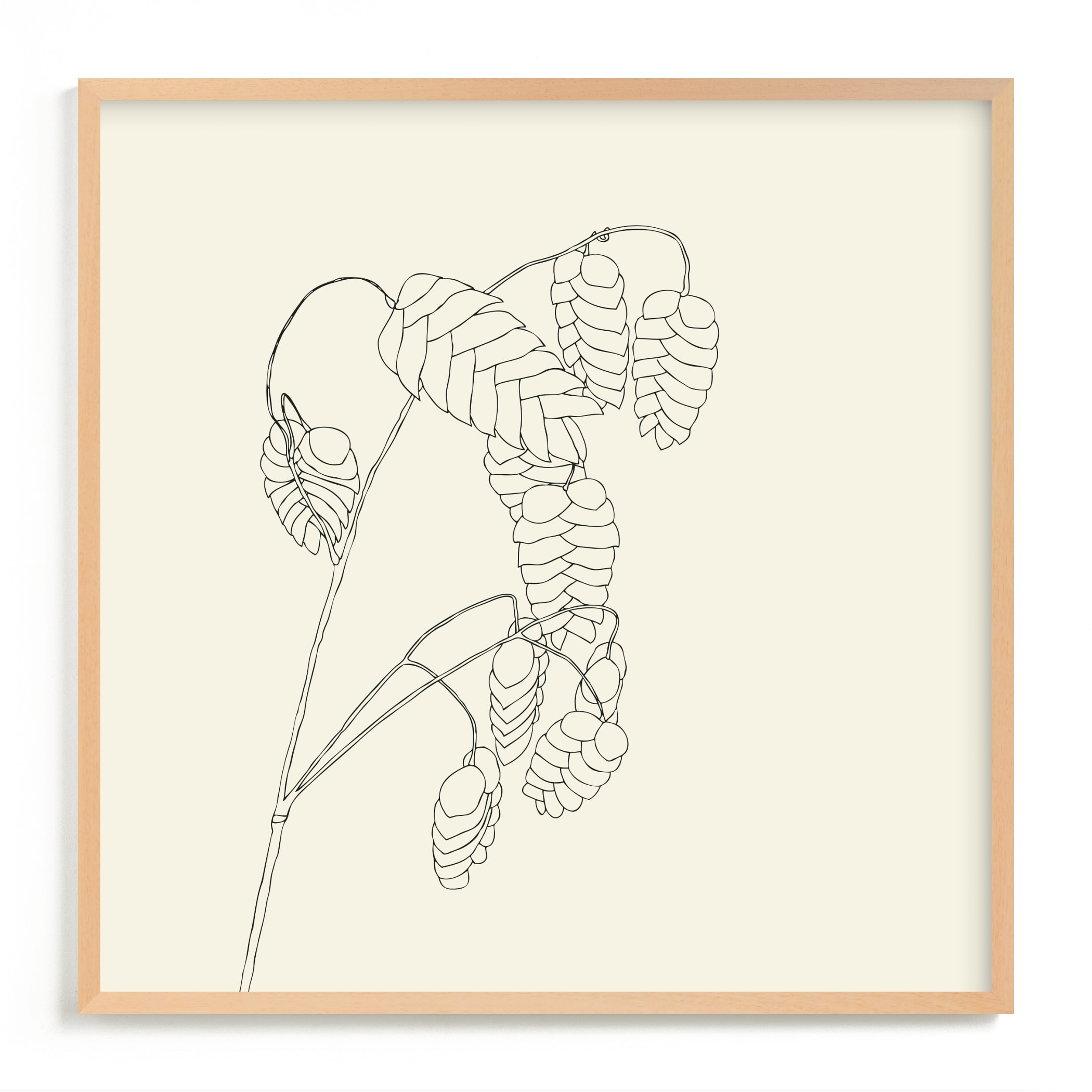 """""""Grass With Seed"""" - Limited Edition Art Print by Jorey Hurley in beautiful frame options and a variety of sizes."""