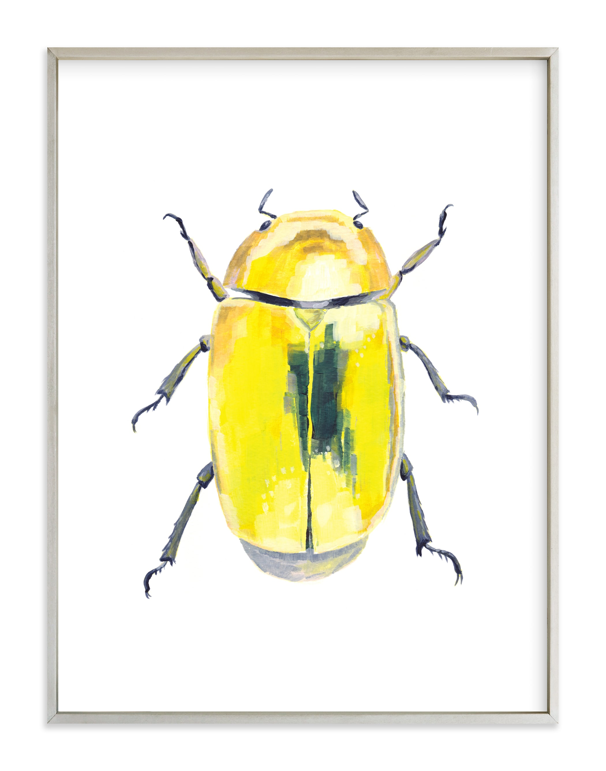 """Golden Scarab Beetle"" - Art Print by Holly Whitcomb in beautiful frame options and a variety of sizes."