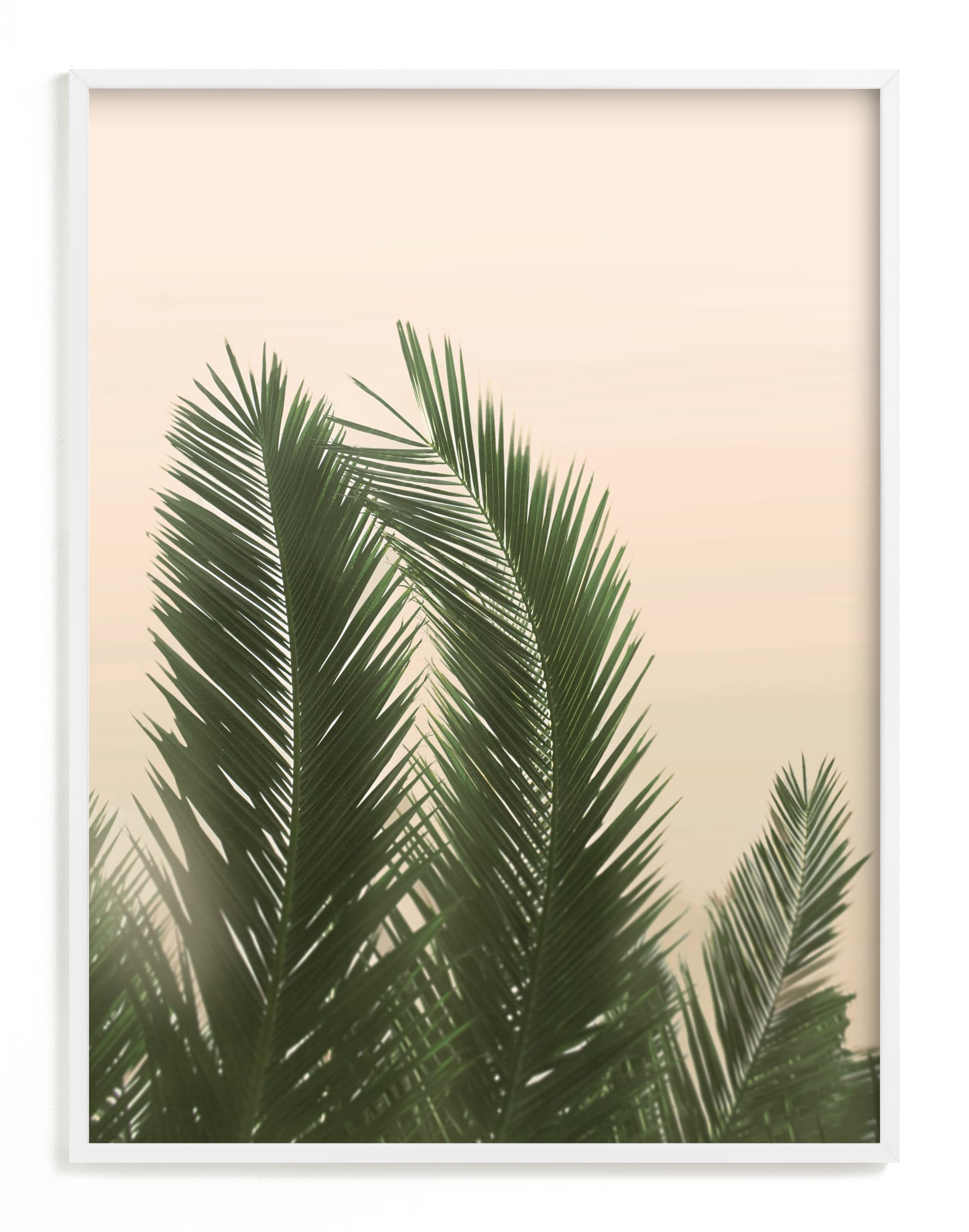 """""""Tropical Palm Tree"""" - Limited Edition Art Print by Wilder California in beautiful frame options and a variety of sizes."""