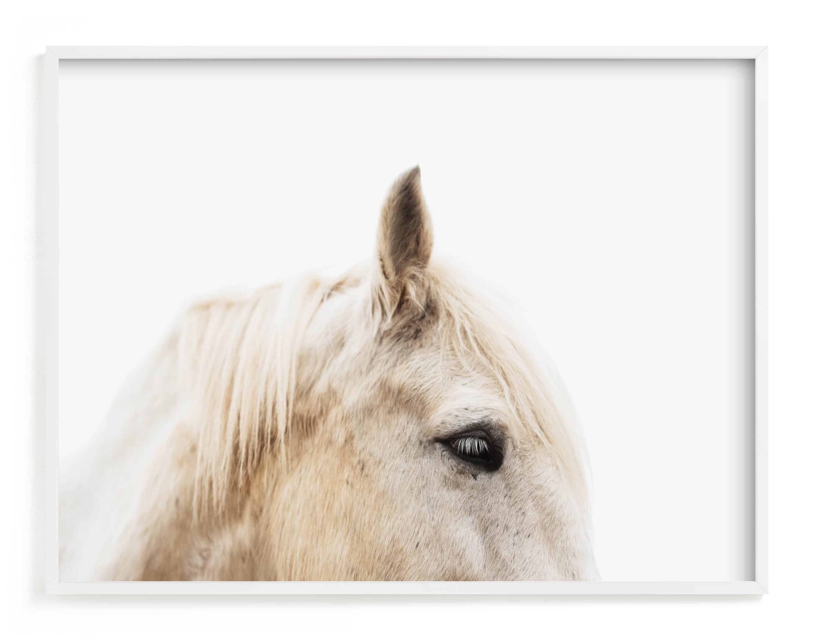 """""""Le Creme Cheval"""" - Limited Edition Art Print by Amy Carroll in beautiful frame options and a variety of sizes."""