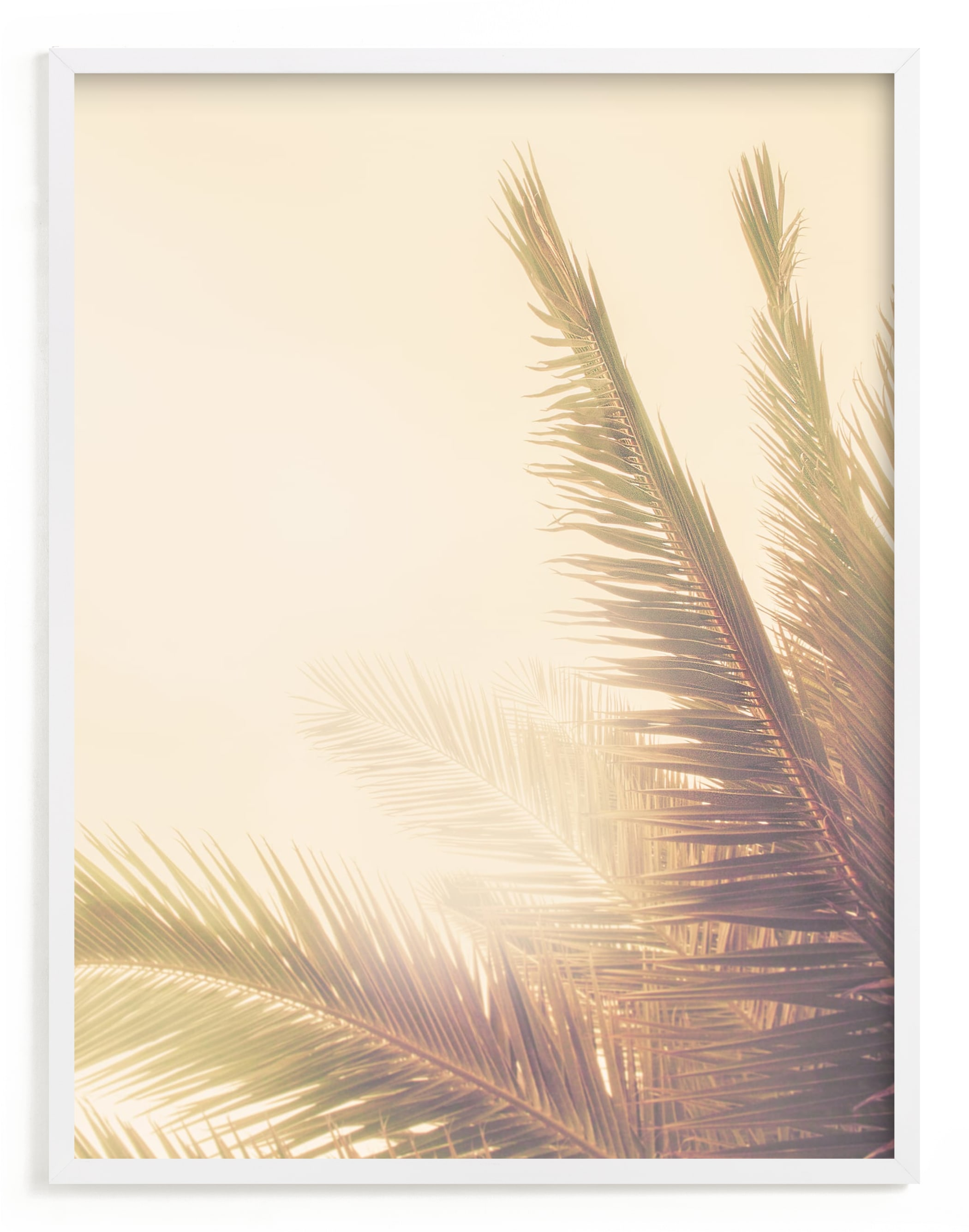 """""""Golden Palm Tree"""" - Limited Edition Art Print by Wilder California in beautiful frame options and a variety of sizes."""