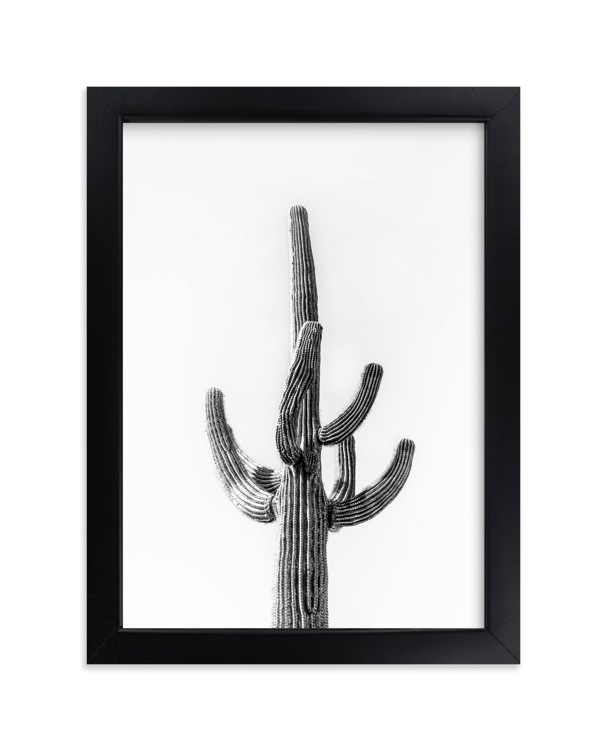 """""""Lone Cactus"""" - Limited Edition Art Print by Ellen Schlegelmilch in beautiful frame options and a variety of sizes."""