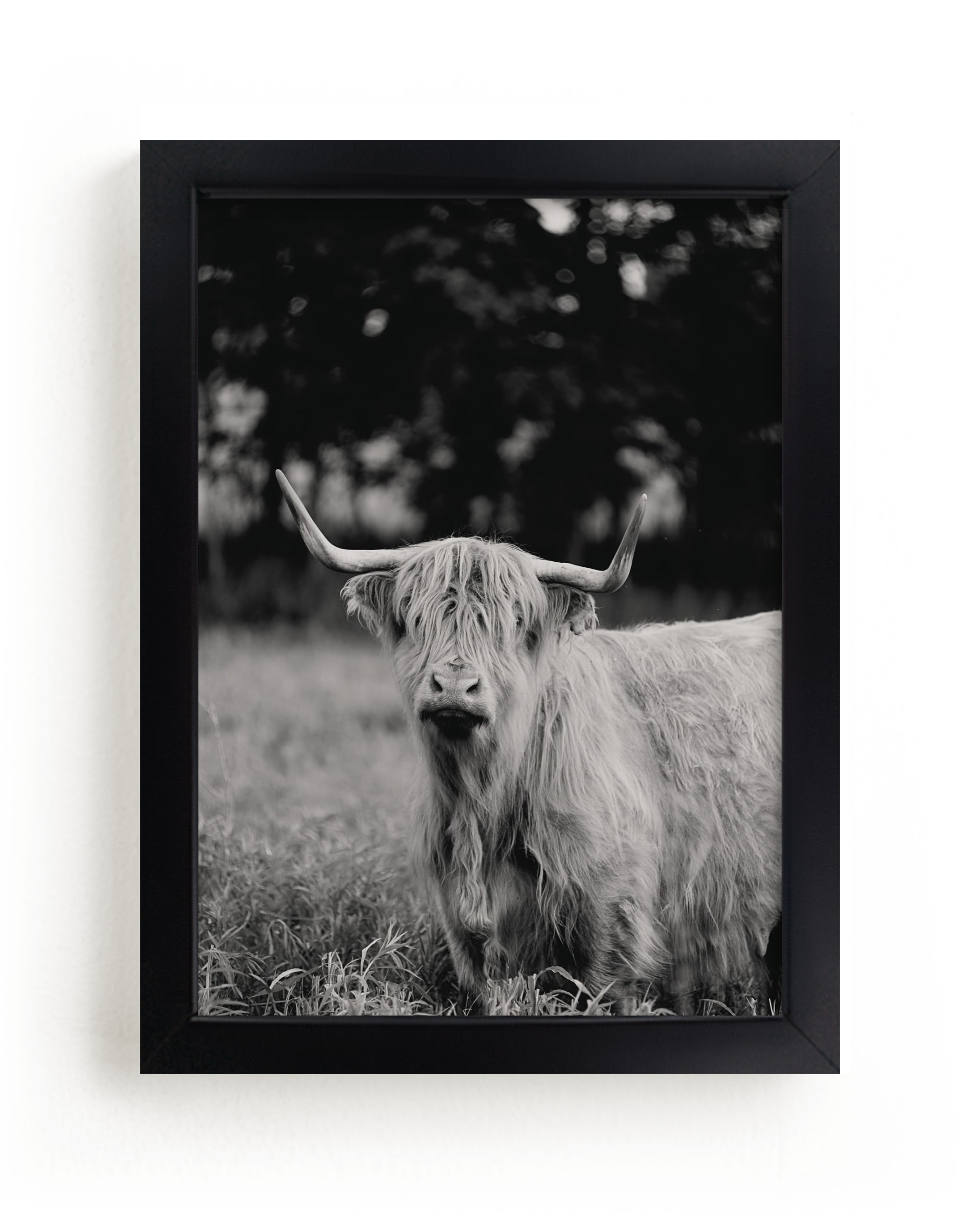 """""""Annie Moffat"""" - Limited Edition Art Print by Amy Carroll in beautiful frame options and a variety of sizes."""