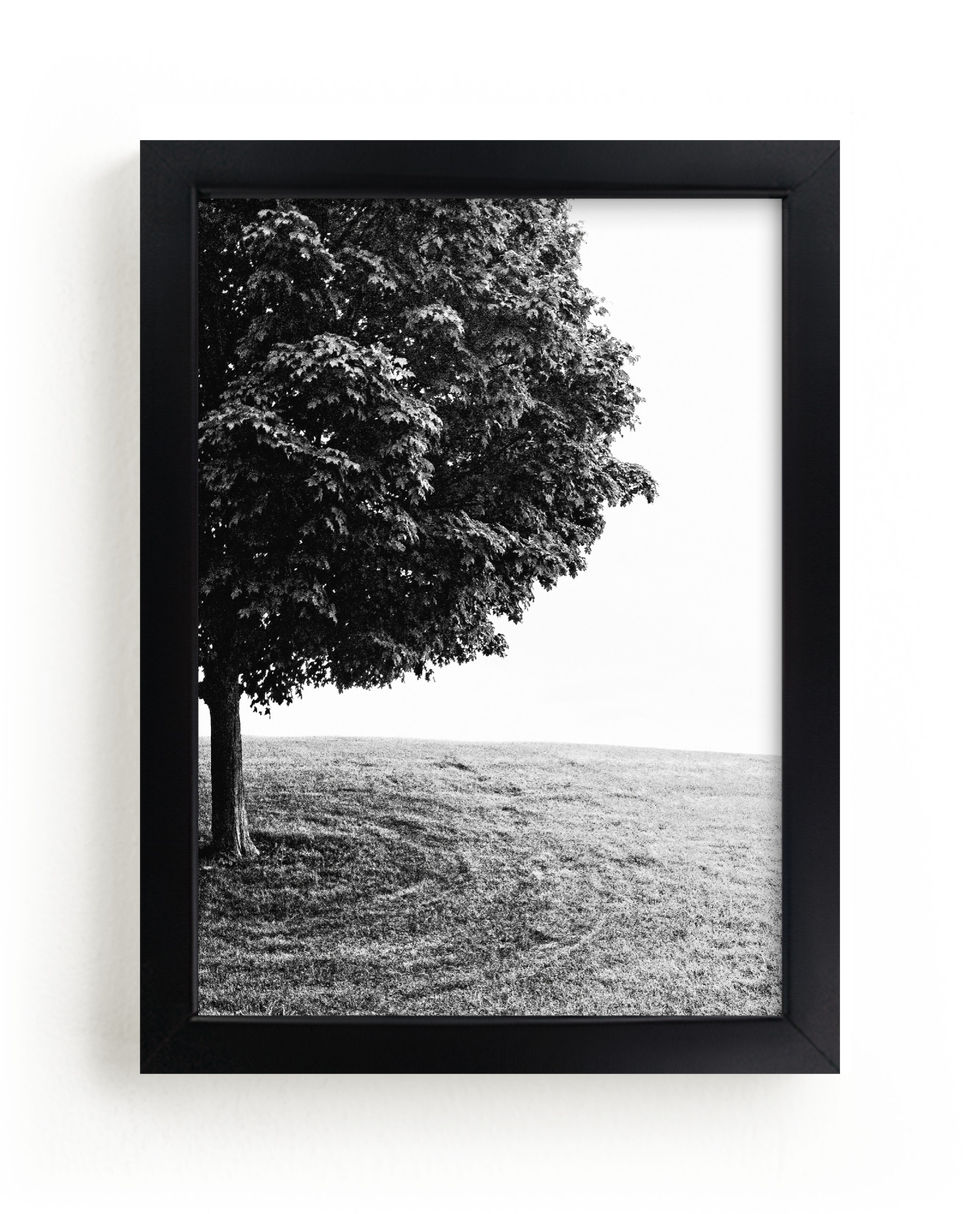 """""""Tree on the Hill """" - Limited Edition Art Print by Eric Ransom in beautiful frame options and a variety of sizes."""