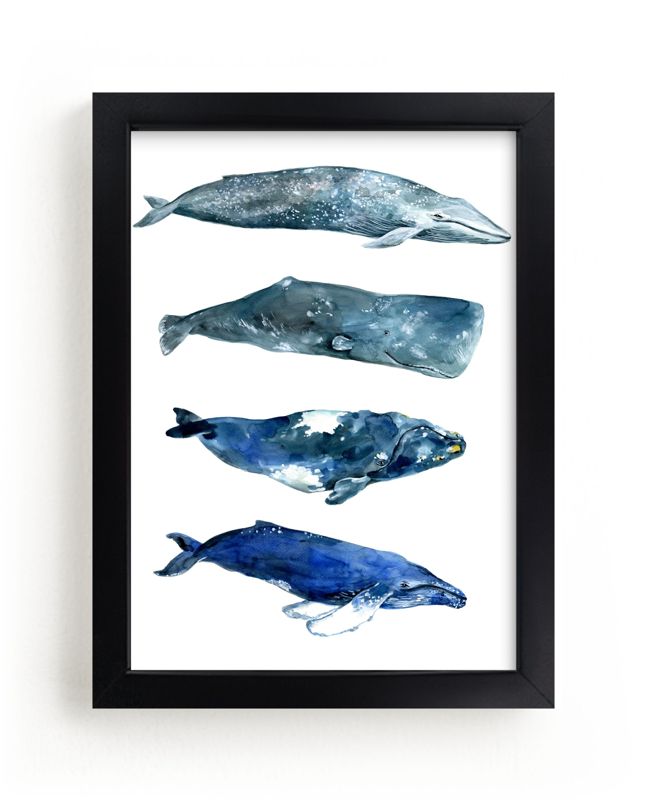"""""""Whales"""" by Alexandra Dzh in beautiful frame options and a variety of sizes."""