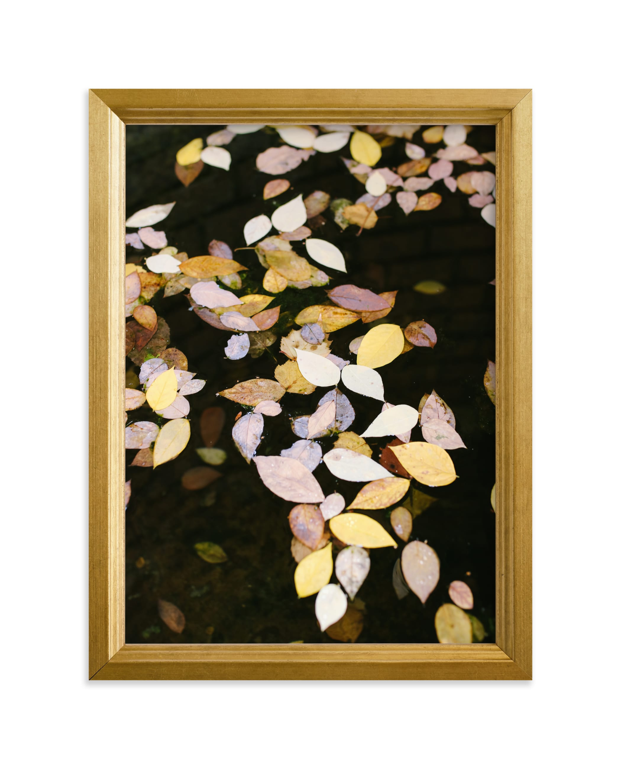 """Autumn Palette II"" - Limited Edition Art Print by lulu and isabelle in beautiful frame options and a variety of sizes."