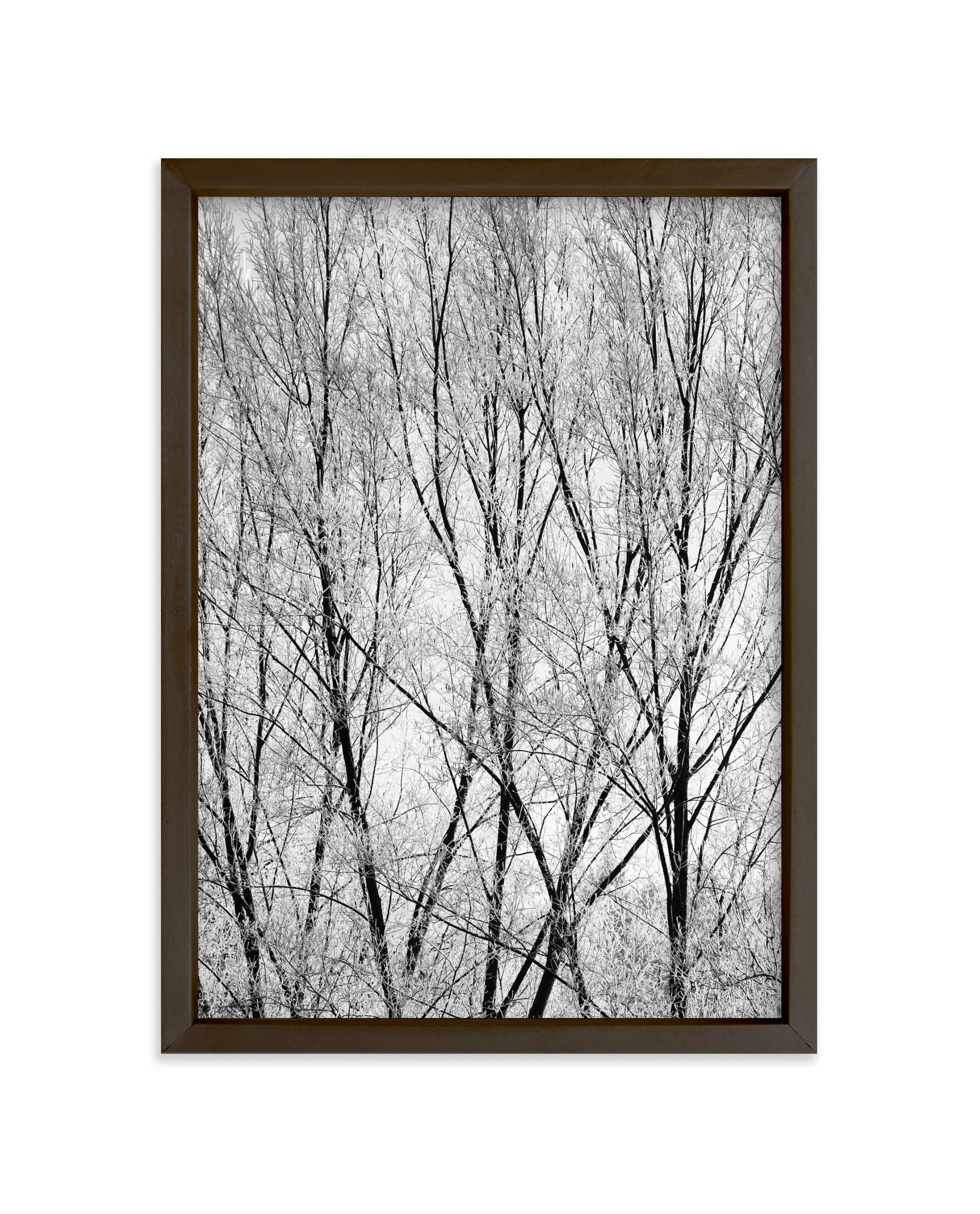 """Winter Trees"" - Limited Edition Art Print by Magdalena Kucova in beautiful frame options and a variety of sizes."