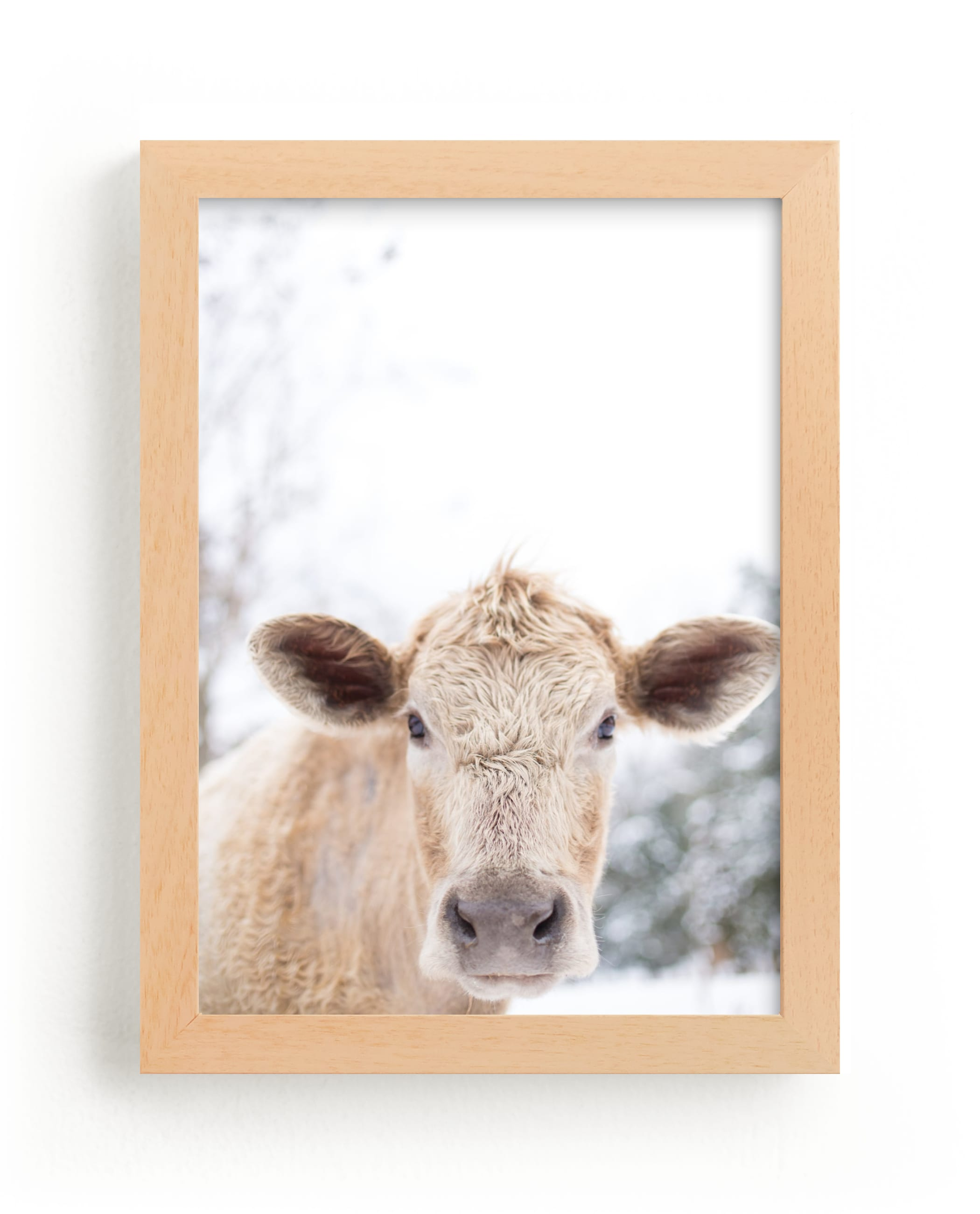 """moo cow"" - Limited Edition Art Print by Emily Gilbert in beautiful frame options and a variety of sizes."