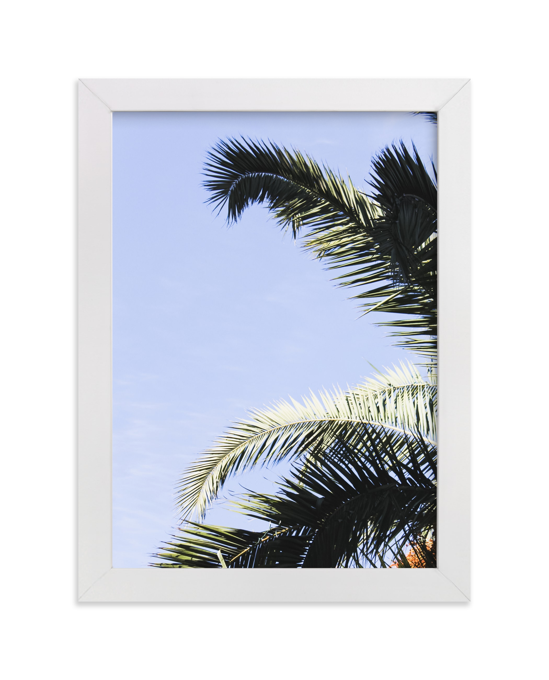 """Palm I"" - Limited Edition Art Print by Annie Montgomery in beautiful frame options and a variety of sizes."