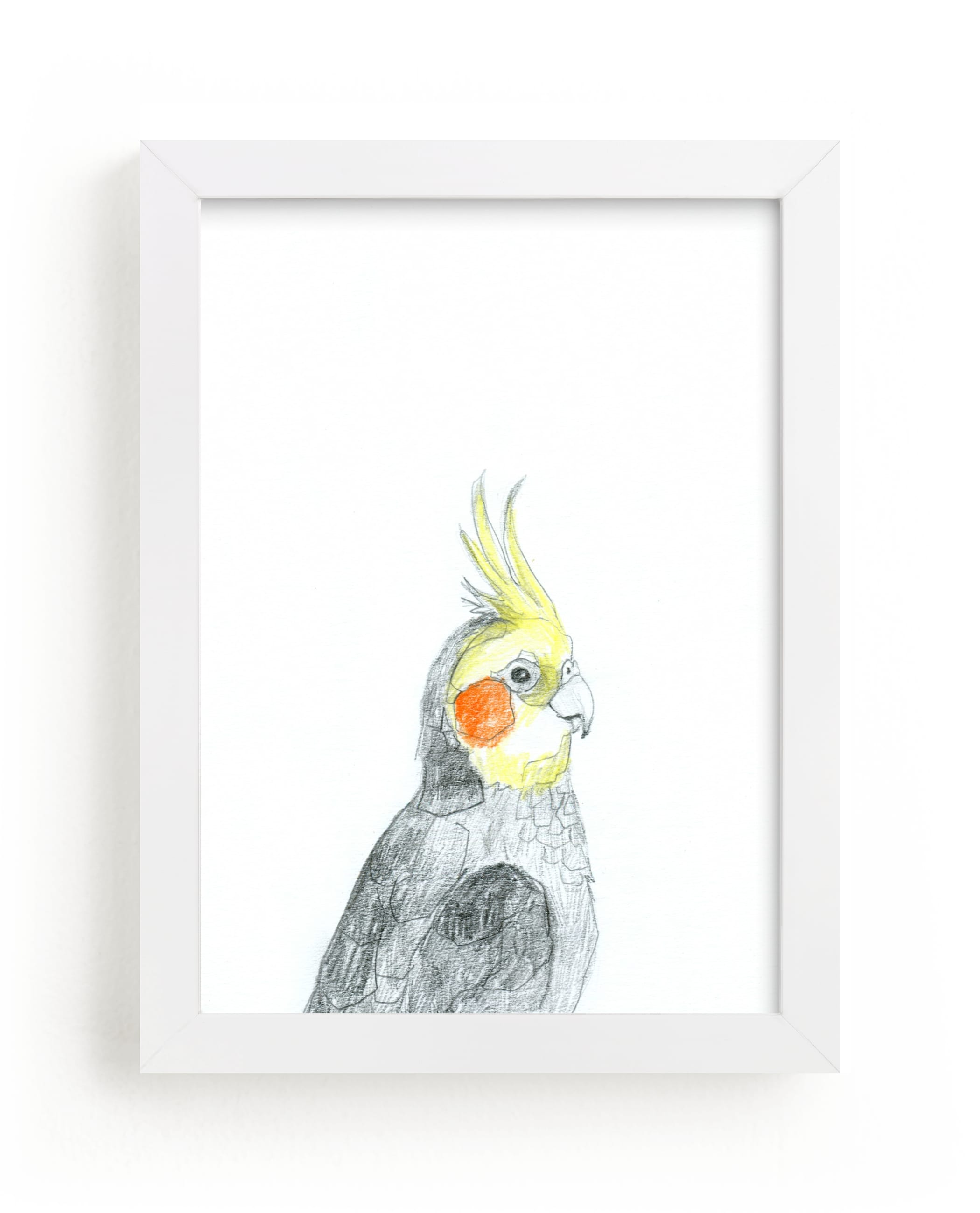"""""""Cockatiel"""" - Limited Edition Art Print by Kirsta Benedetti in beautiful frame options and a variety of sizes."""