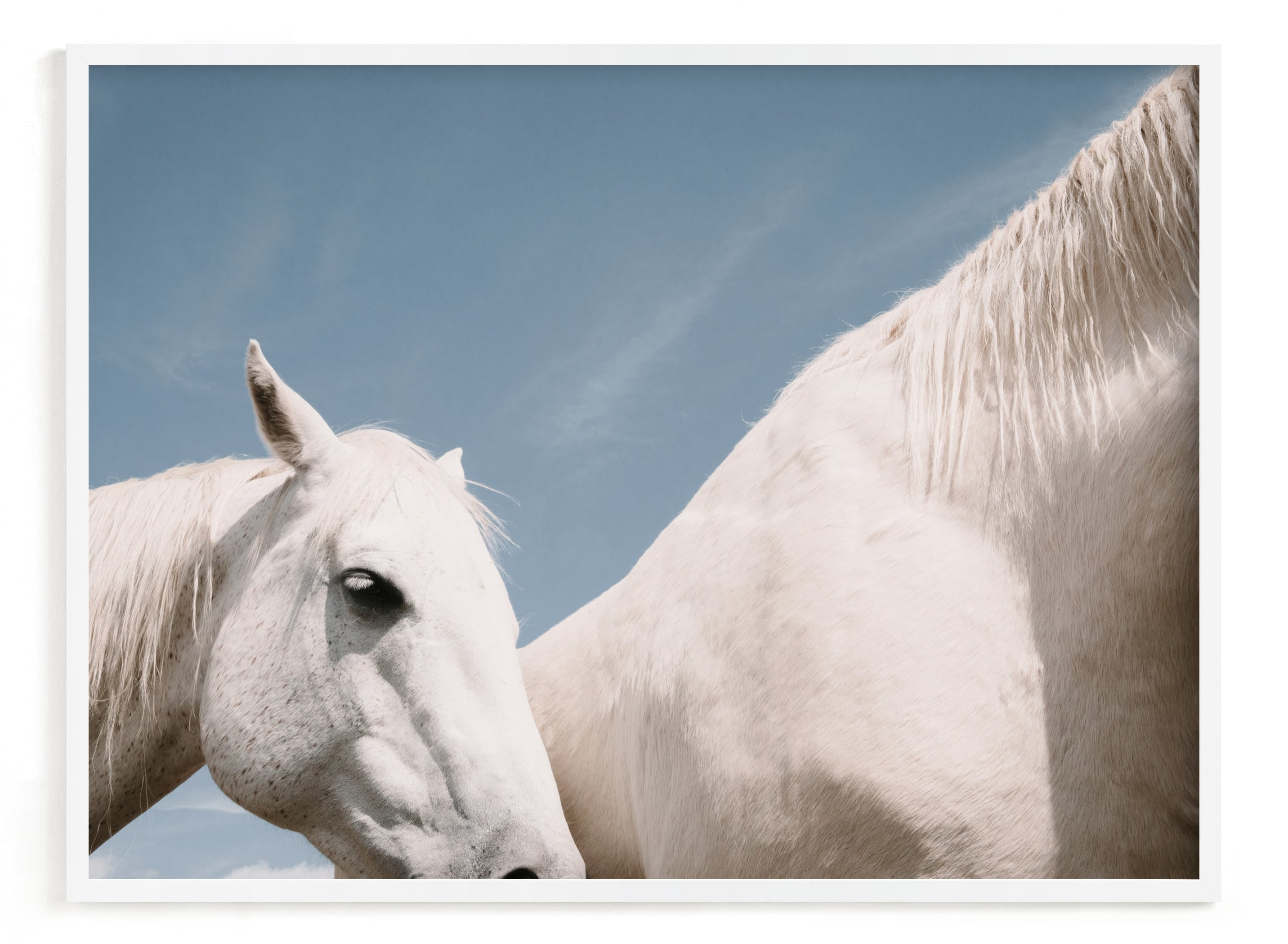 """""""friend"""" - Limited Edition Art Print by Sara Hicks Malone in beautiful frame options and a variety of sizes."""