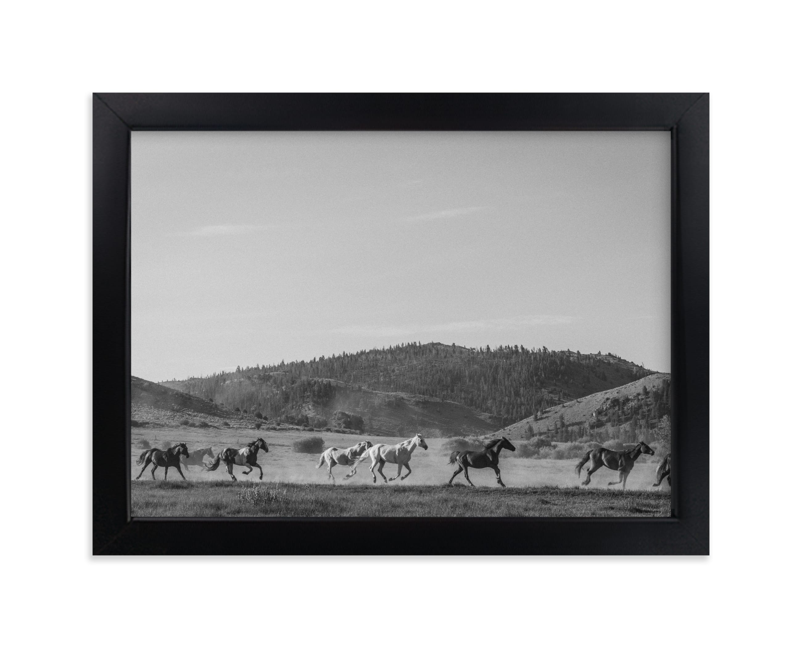 """""""wild wild west II"""" - Limited Edition Art Print by Sara Hicks Malone in beautiful frame options and a variety of sizes."""