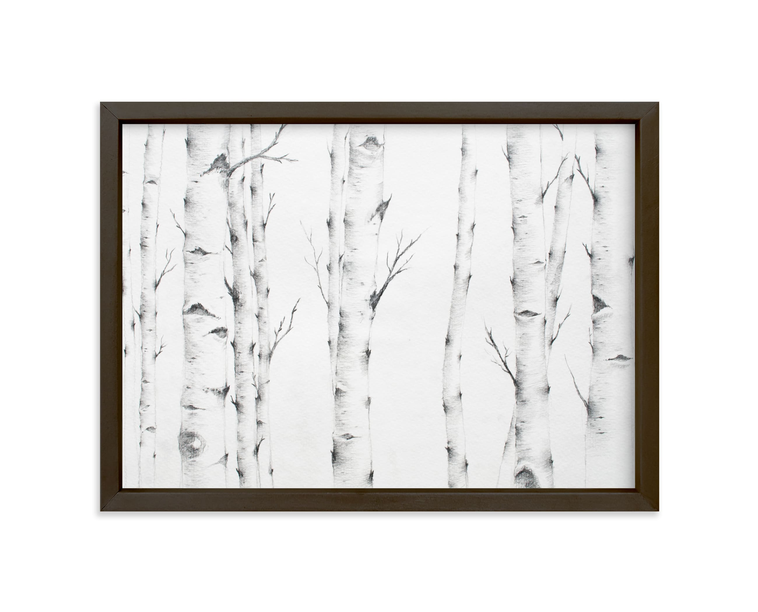 """""""Birch Story"""" - Limited Edition Art Print by jinseikou in beautiful frame options and a variety of sizes."""