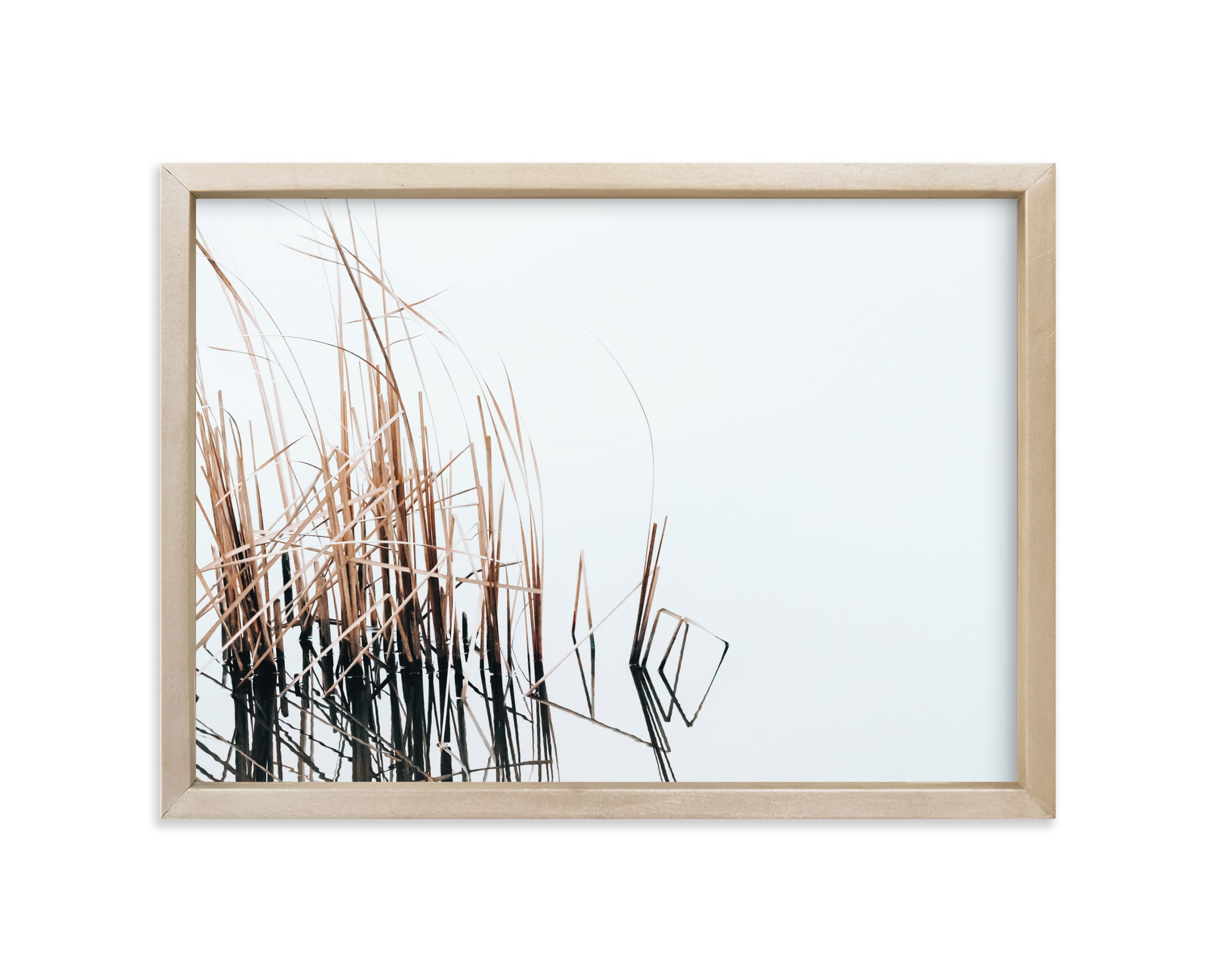 """""""Abstract Reeds"""" - Limited Edition Art Print by Robin Ott in beautiful frame options and a variety of sizes."""