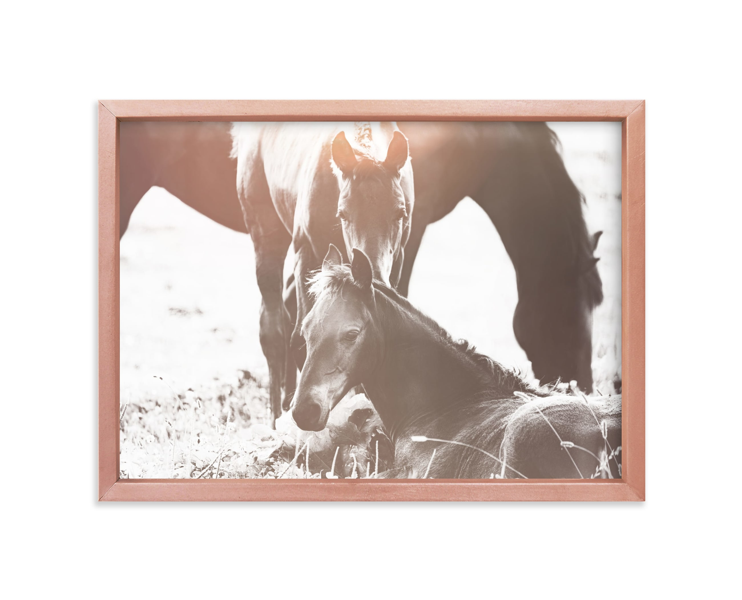 """""""At Dawn"""" - Limited Edition Art Print by Robin Ott in beautiful frame options and a variety of sizes."""