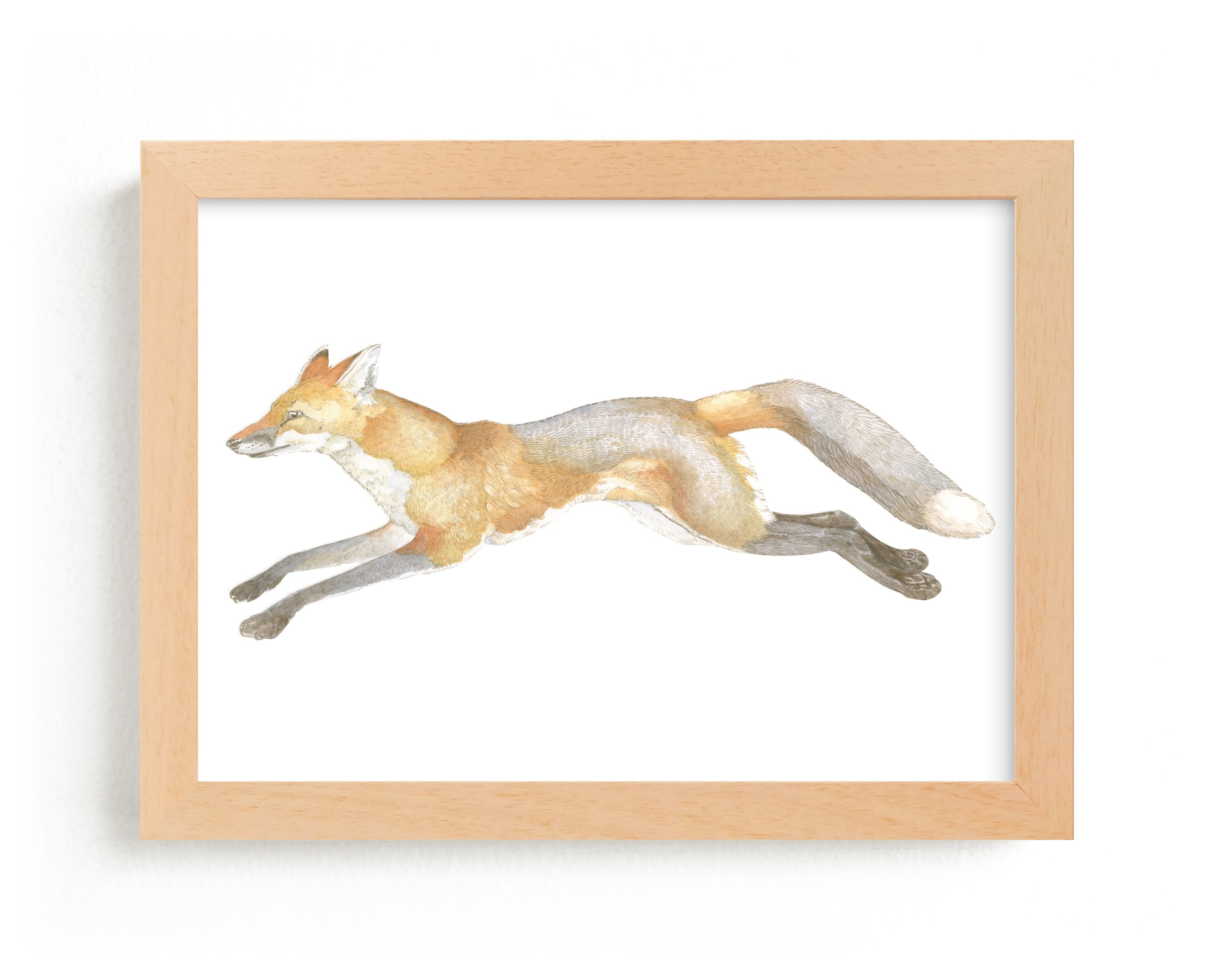 """Swift Fox"" - Limited Edition Art Print by Natalie Groves in beautiful frame options and a variety of sizes."
