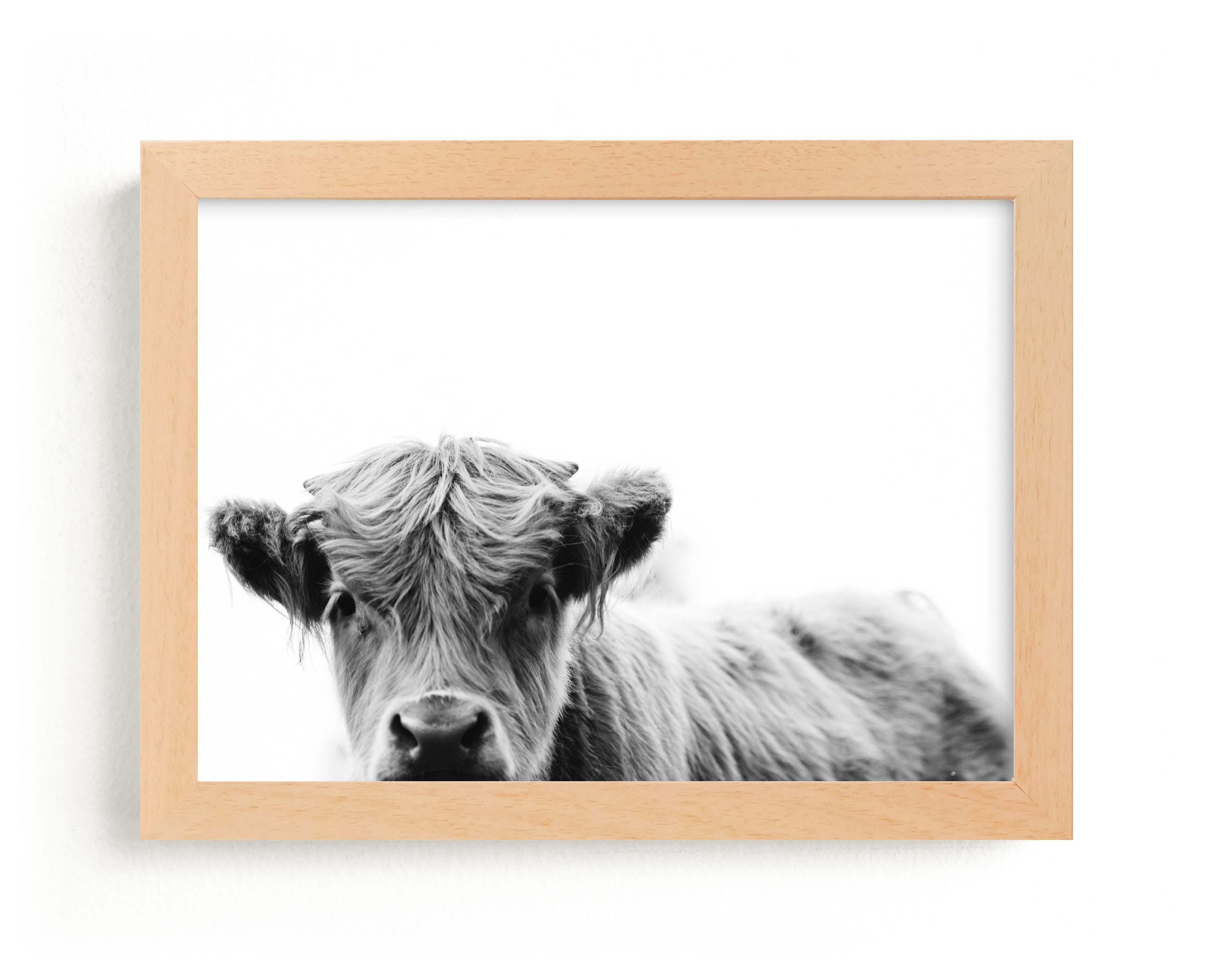 """""""Leon"""" - Limited Edition Art Print by Amy Carroll in beautiful frame options and a variety of sizes."""
