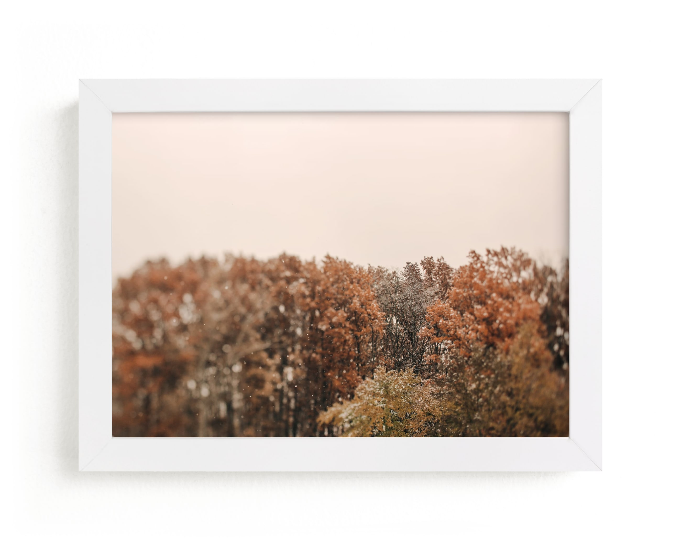 """""""Oak Leaves and Snowflakes"""" - Limited Edition Art Print by ALICIA BOCK in beautiful frame options and a variety of sizes."""