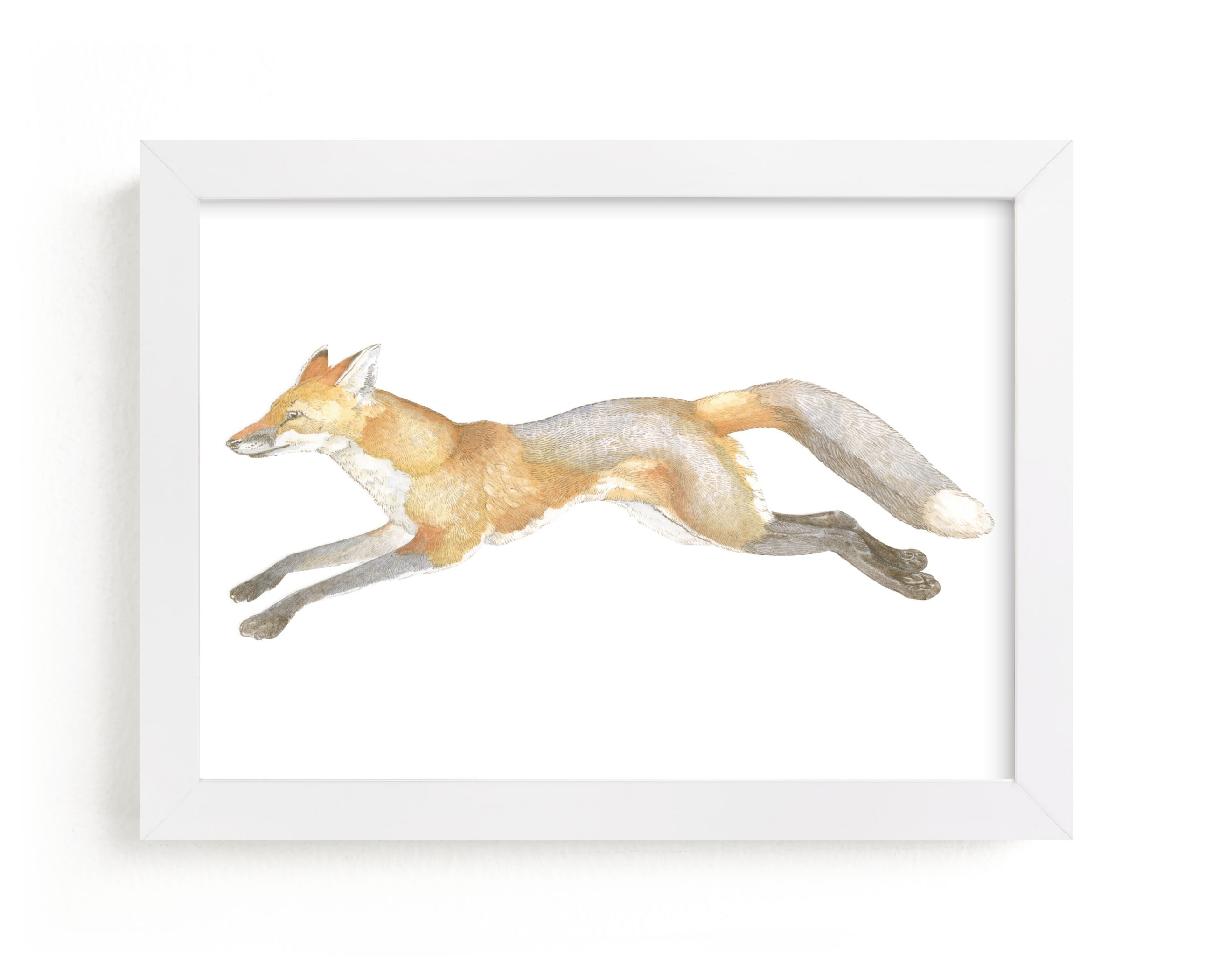 """""""Swift Fox"""" - Limited Edition Art Print by Natalie Groves in beautiful frame options and a variety of sizes."""