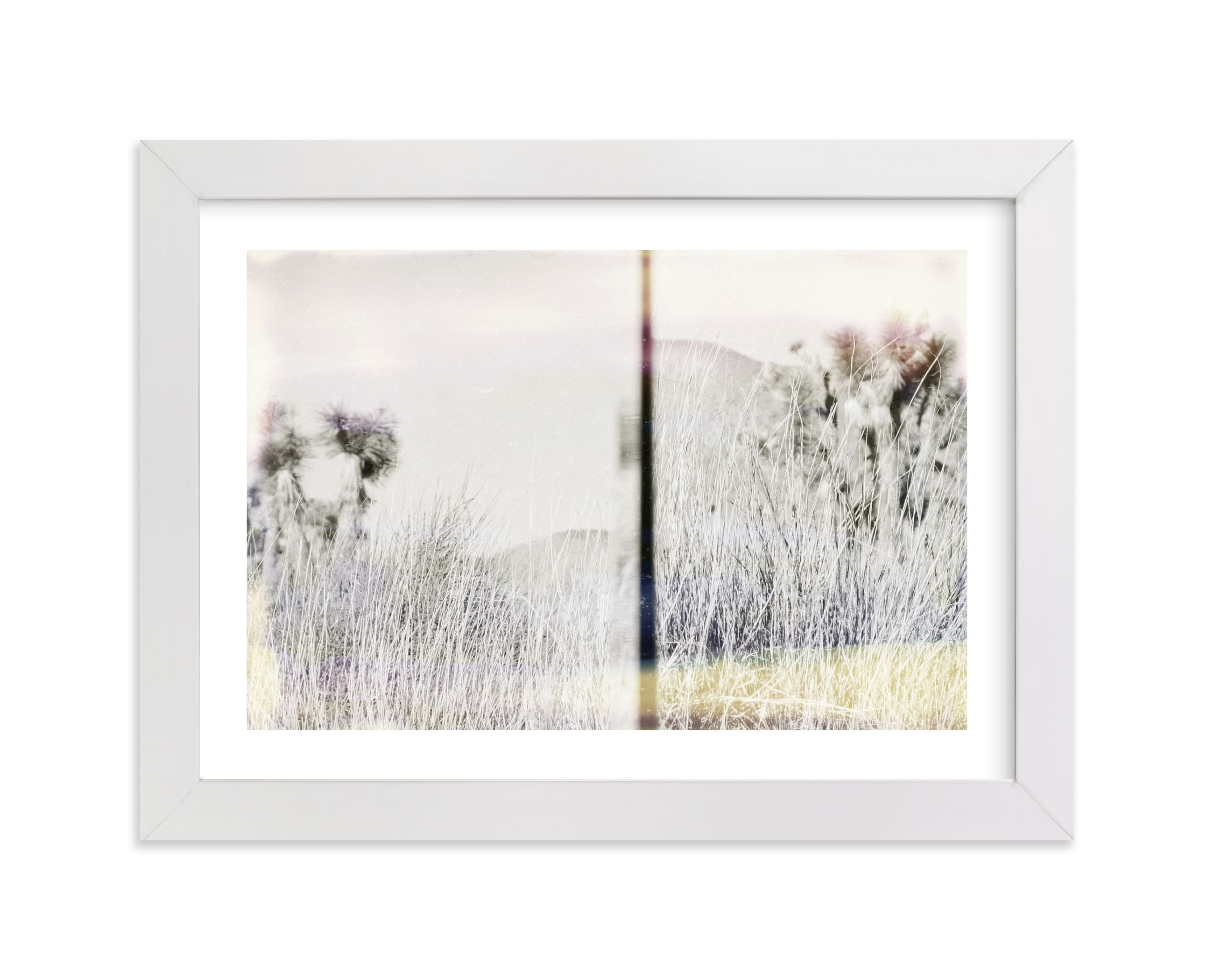 """""""Joshua Tree"""" - Limited Edition Art Print by Kaitlin Rebesco in beautiful frame options and a variety of sizes."""