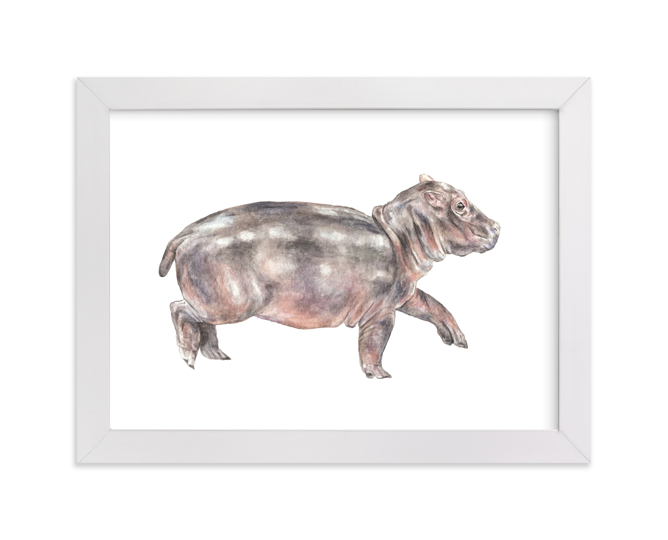 """Watercolor baby hippo"" - Art Print by Lauren Rogoff in beautiful frame options and a variety of sizes."