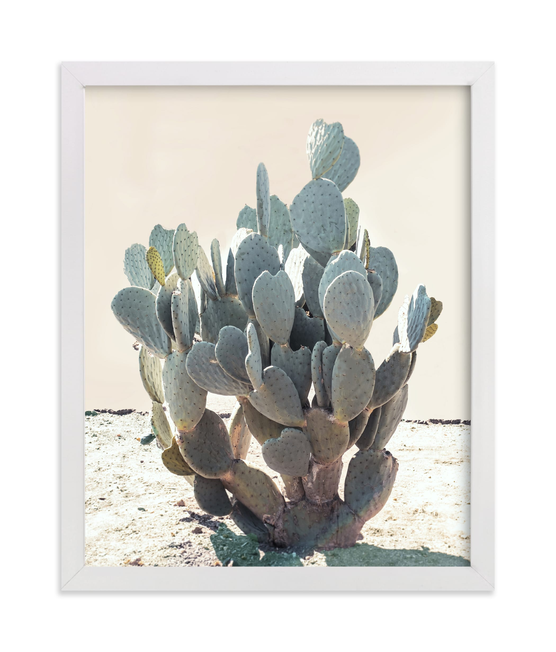 """""""Blue Cactus"""" - Limited Edition Art Print by Wilder California in beautiful frame options and a variety of sizes."""