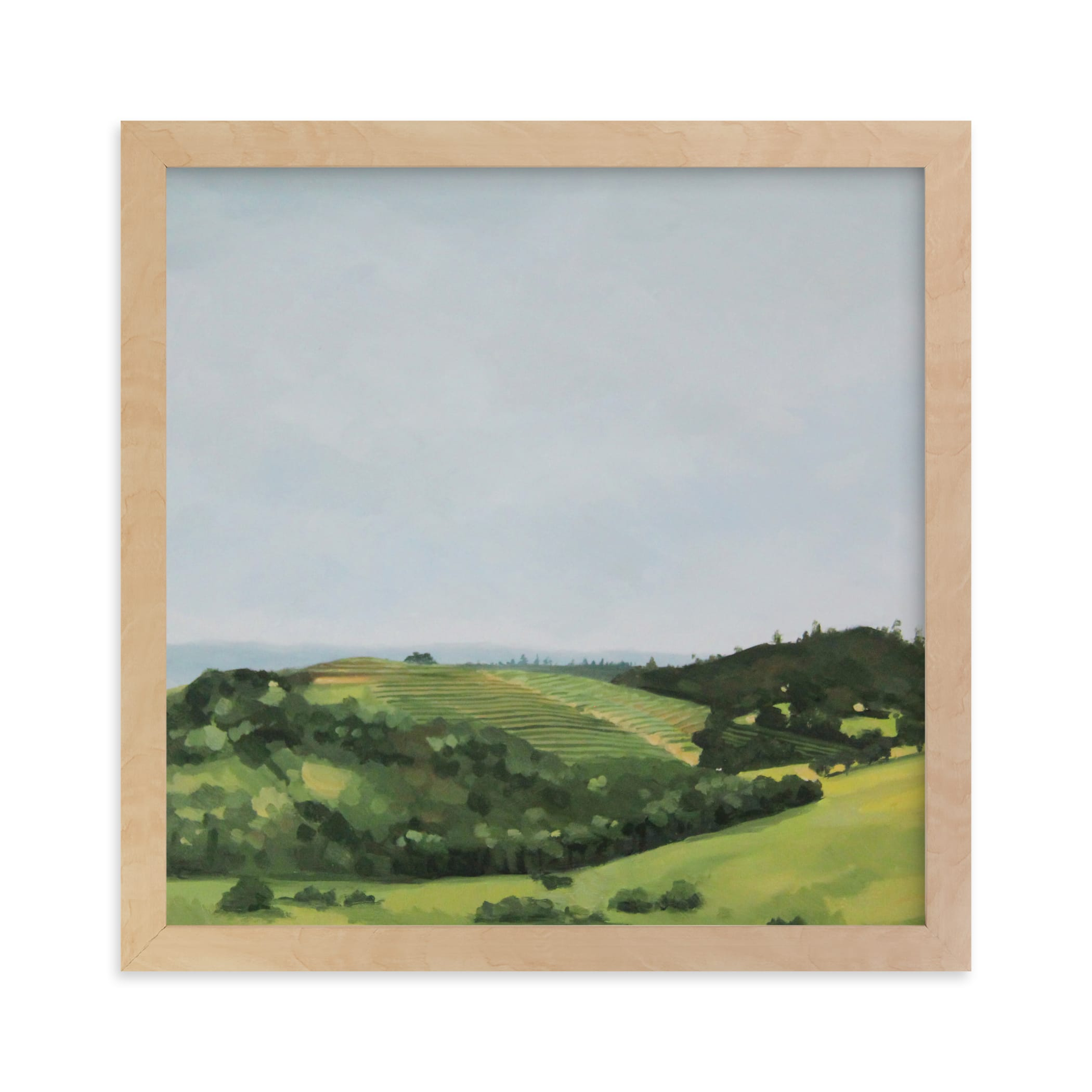"""""""Rolling Vines"""" - Limited Edition Art Print by Amanda Phelps in beautiful frame options and a variety of sizes."""