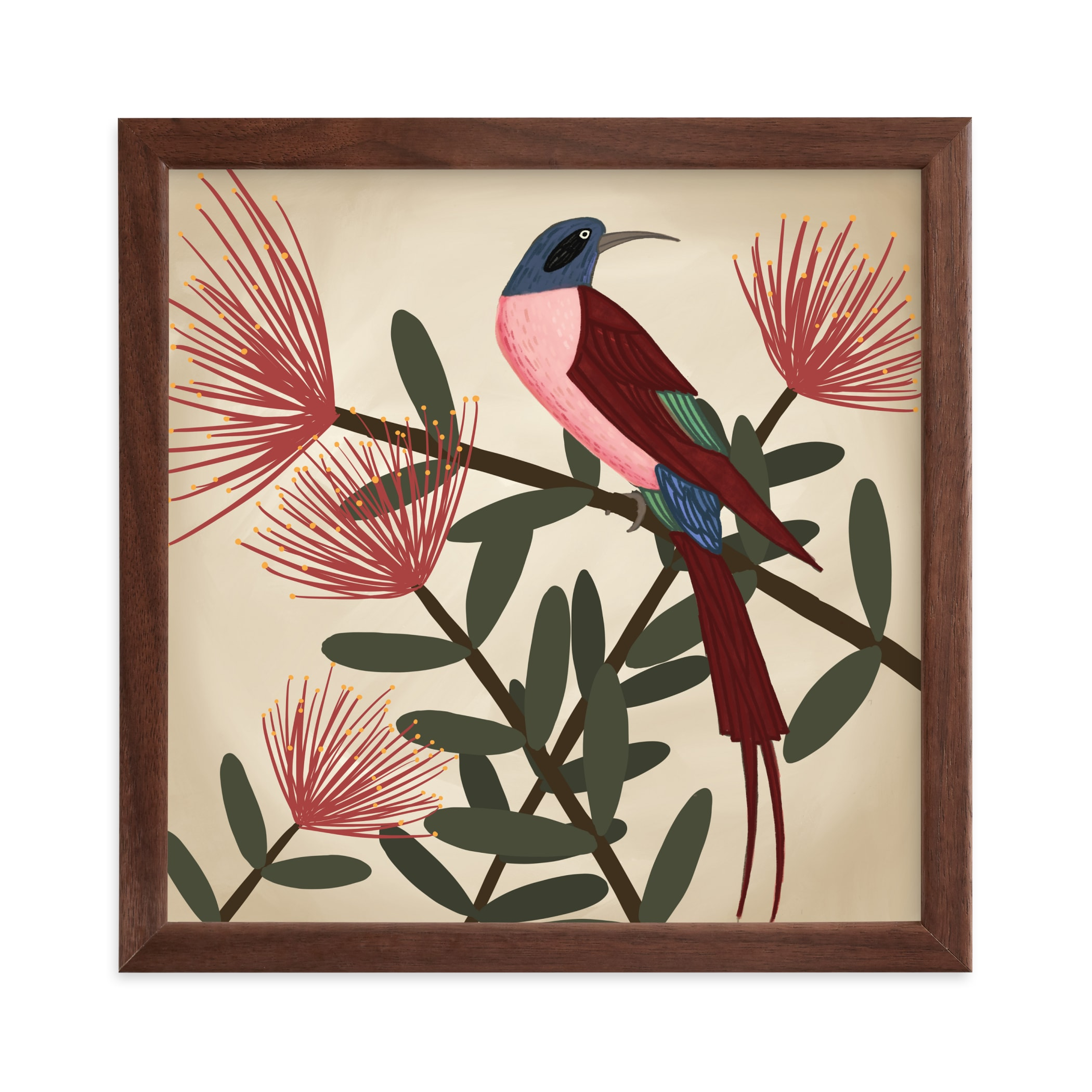 """""""Bee Eater"""" - Limited Edition Art Print by Jessie Burch in beautiful frame options and a variety of sizes."""