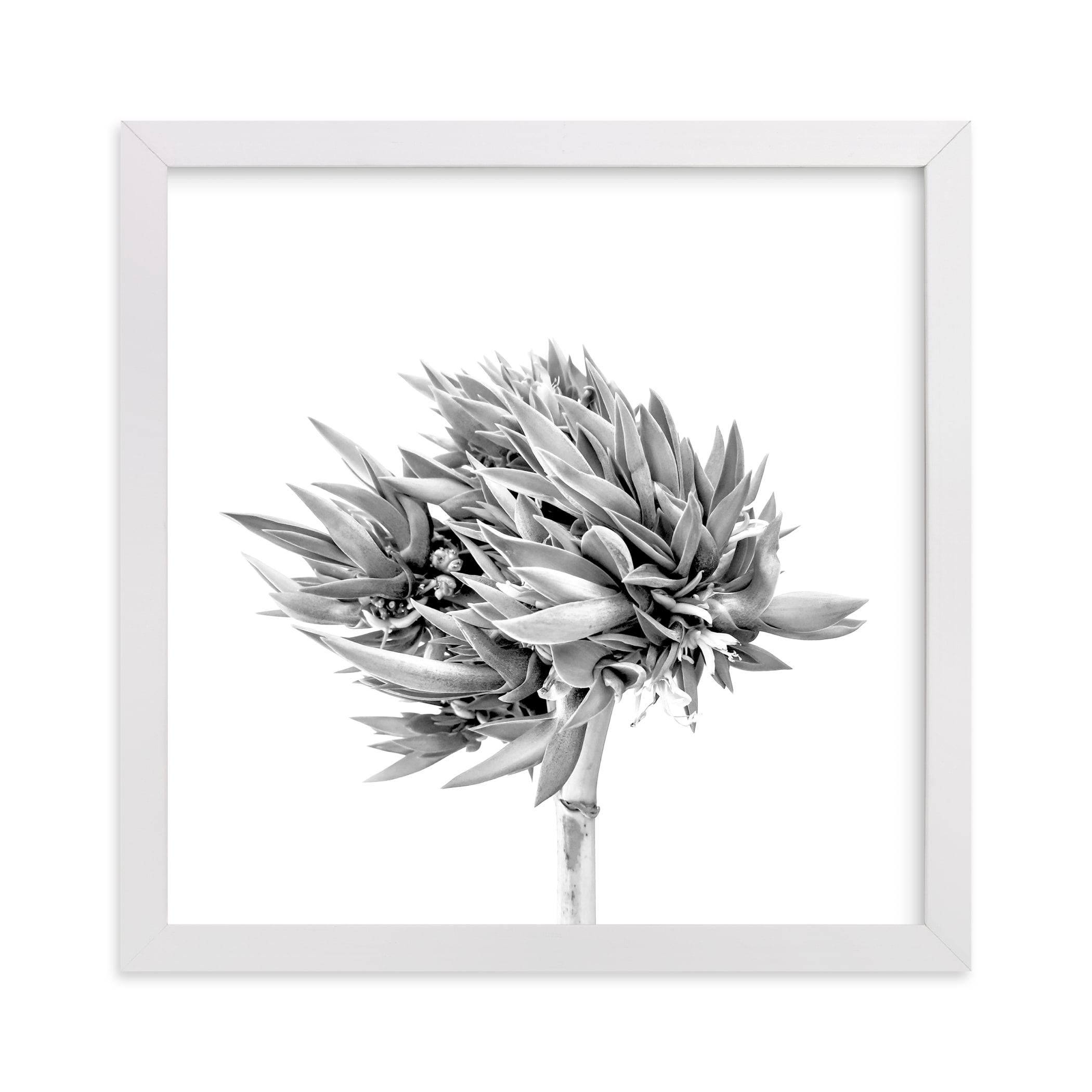 """""""Abode 2"""" - Limited Edition Art Print by Lisa Sundin in beautiful frame options and a variety of sizes."""